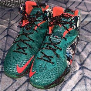 Nike Lebron 12 Xmas Akron Birch